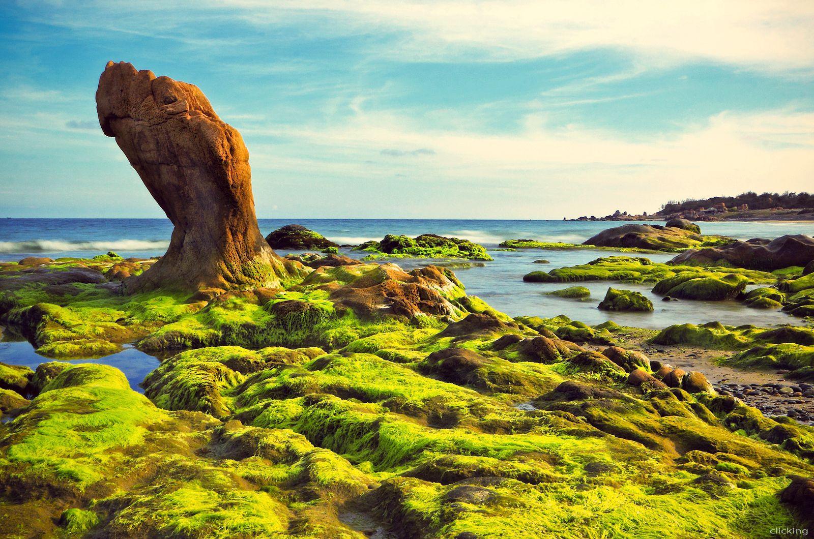 Top 15 địa điểm du lịch Phan Thiết hấp dẫn nhất định phải đến